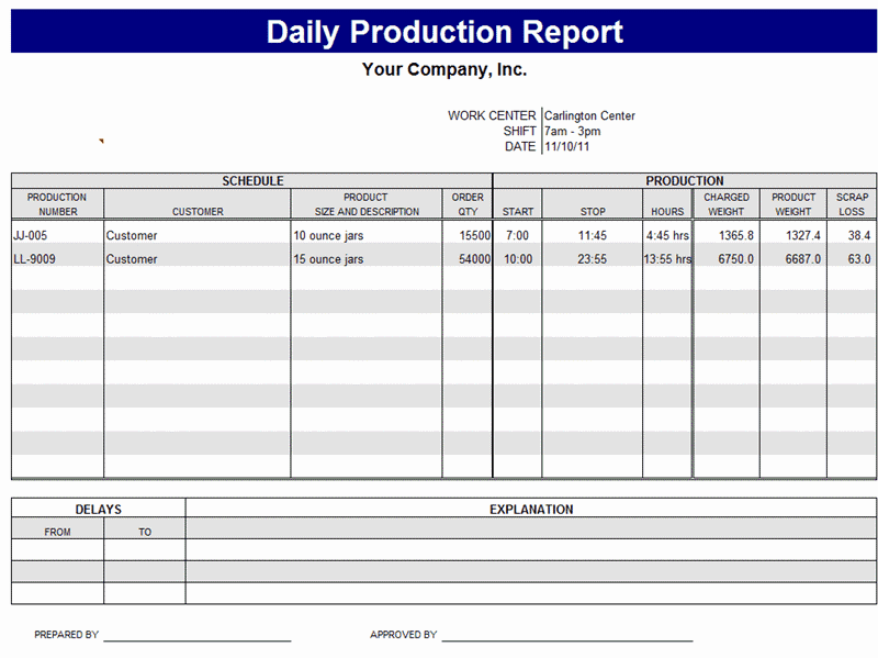 daily report format template
